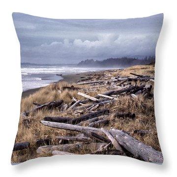 Beached Driftlogs Throw Pillow by Richard Farrington
