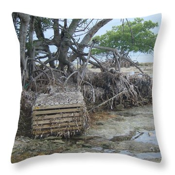 Throw Pillow featuring the photograph Beached Lobster Trap by Robert Nickologianis