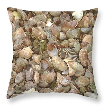 Throw Pillow featuring the photograph Beached Shells by Suzanne Powers