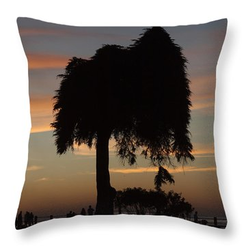 Beachside Sunset In La Jolla Throw Pillow by Ruth Jolly