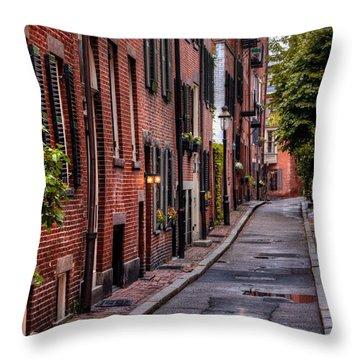 Beacon Hill Boston Throw Pillow