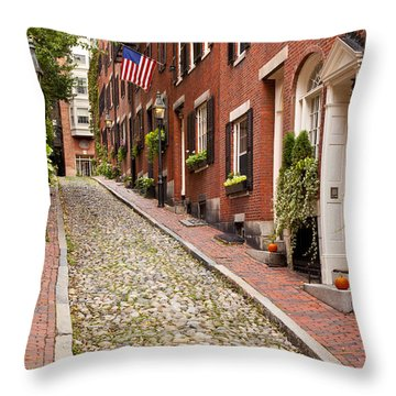 Throw Pillow featuring the photograph Beacon Hill by Brian Jannsen
