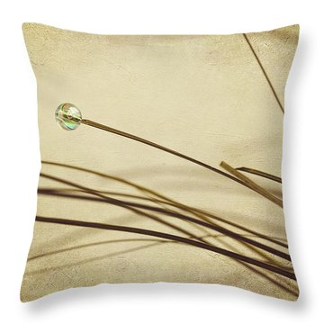 Bead Throw Pillow by Svetlana Sewell