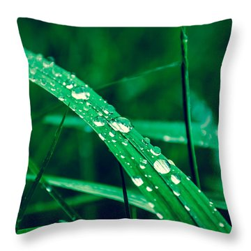 Beading Up Throw Pillow