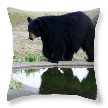 Bear 2 Throw Pillow