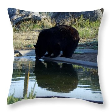 Bear 4 Throw Pillow