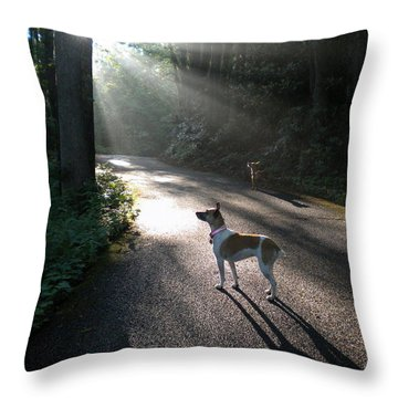Throw Pillow featuring the photograph Bear Alert by Diannah Lynch