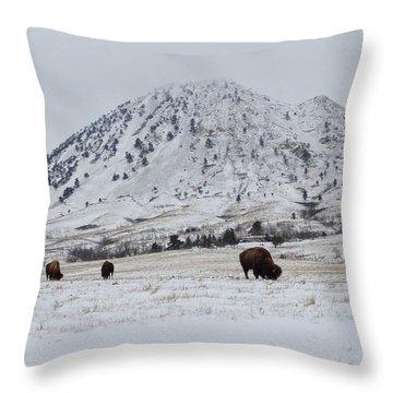Bear Butte Buffalo Throw Pillow