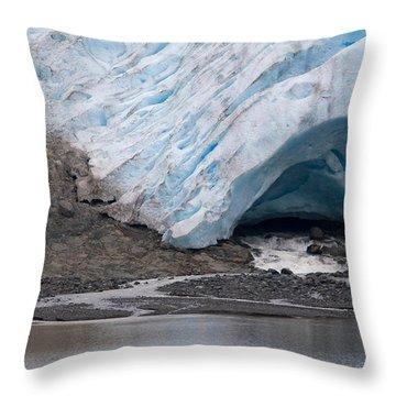 Designs Similar to Bear Glacier Melting