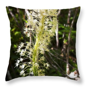Bear Grass No 3 Throw Pillow