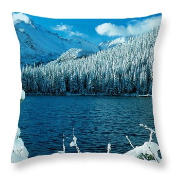 Bear Lake Throw Pillow by Eric Glaser