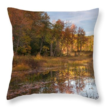 Bear River Throw Pillow
