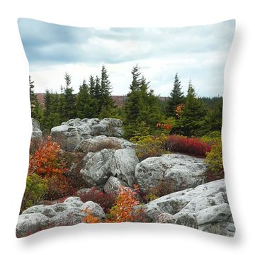 Bear Rocks Throw Pillow