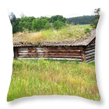 Bear Springs Throw Pillow