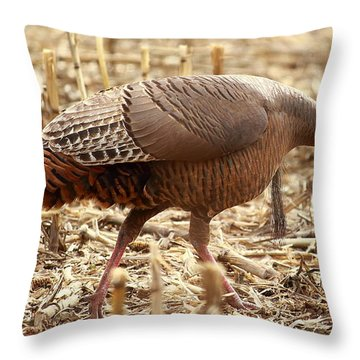 Bearded Wild Turkey Hen Throw Pillow