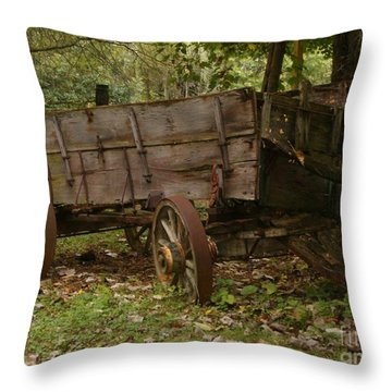 Throw Pillow featuring the photograph Beaten By Time by Sara  Raber