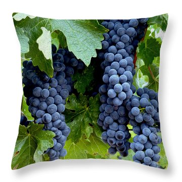 Beautiful Fruit Throw Pillow