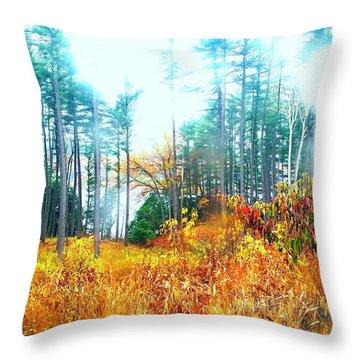 Throw Pillow featuring the photograph Beauti Rain by Rose Wang