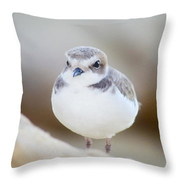 Beautiful Bird Throw Pillow