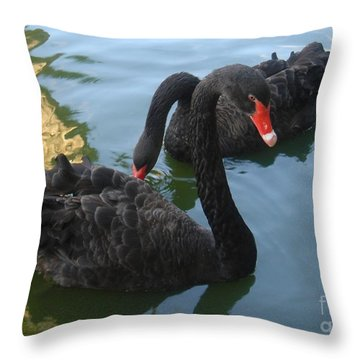 Beautiful Black Swans Throw Pillow by Carla Carson