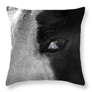 Beautiful Blind Soul Horse Throw Pillow by Peggy Franz