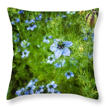 Beautiful Blue Nigella Throw Pillow