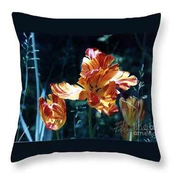 Throw Pillow featuring the photograph Gorgeous Tulip by Phyllis Kaltenbach