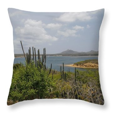 Beautiful Bonaire Throw Pillow