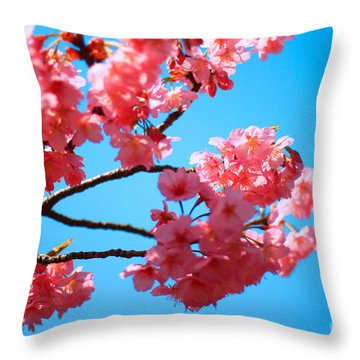 Beautiful Bright Pink Cherry Blossoms Against Blue Sky In Spring Throw Pillow