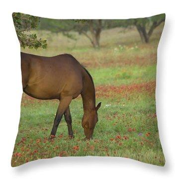 Beautiful Brown American Quarterhorse In Field Of Red Firewheel  Throw Pillow