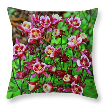 Beautiful Columbine   Throw Pillow by Ed  Riche