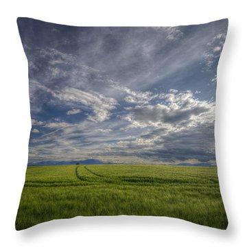 Beautiful Countryside Throw Pillow