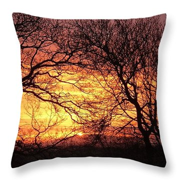 Beautiful Dawn Throw Pillow