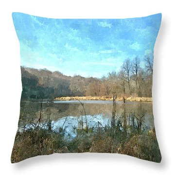 Throw Pillow featuring the photograph Beautiful Day 2 by Sara  Raber