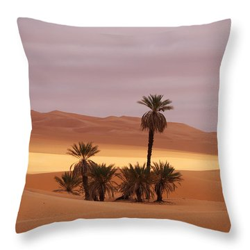 Beautiful Desert Throw Pillow