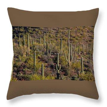 Throw Pillow featuring the photograph Beautiful Desert Morning by Elaine Malott