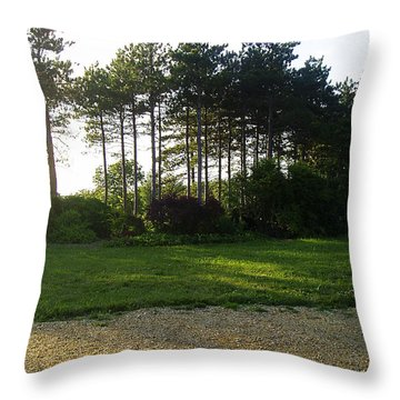 Throw Pillow featuring the photograph Beautiful Earth by Verana Stark