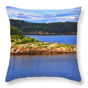 Beautiful Evening Throw Pillow