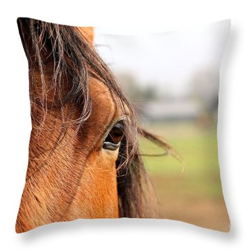 Beautiful Eye Throw Pillow