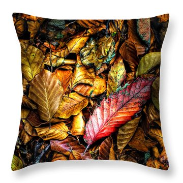 Throw Pillow featuring the photograph Beautiful Fall Color by Meirion Matthias