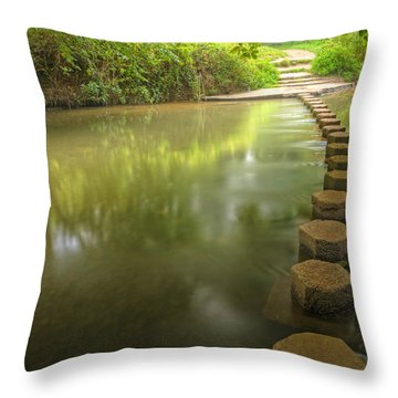 Beautiful Forest Scene Of Enchanted Stream Flowing Through Lush  Throw Pillow by Matthew Gibson