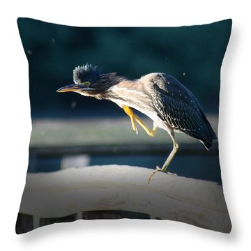Beautiful Green Heron Throw Pillow