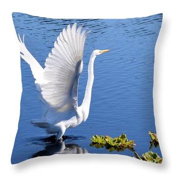 Beautiful Grest White Egret Throw Pillow