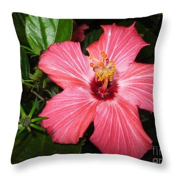 Beautiful Hibiscus Throw Pillow by Oksana Semenchenko