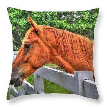 Animal 5 Throw Pillow