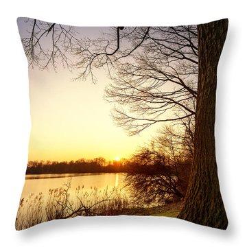 Beautiful Lake Throw Pillow