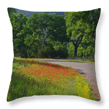 Beautiful Light On The Loop Throw Pillow by Lynn Bauer