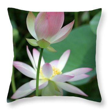 Beautiful Lotus Blooming Throw Pillow