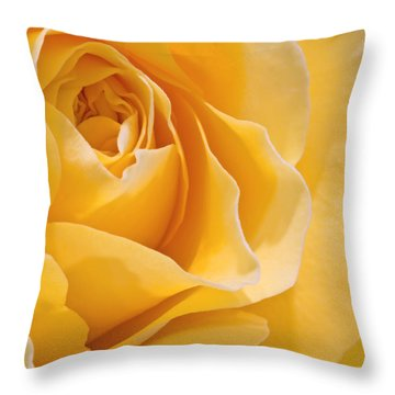 Beautiful Macro Close Up Of Fresh Sprring Rose Flower With Vibra Throw Pillow by Matthew Gibson