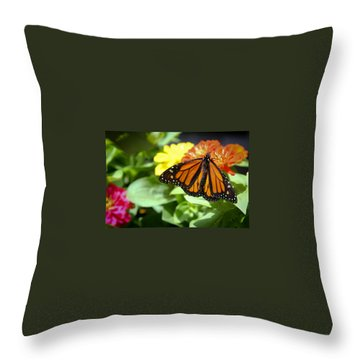 Beautiful Monarch Butterfly Throw Pillow